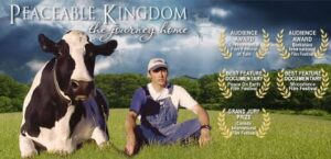 el reino apacible