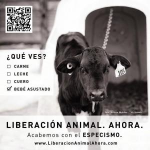 Liberación Animal. Ahora. Metro de Barcelona: YA