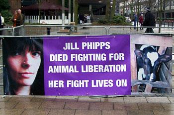 Jill Phipps