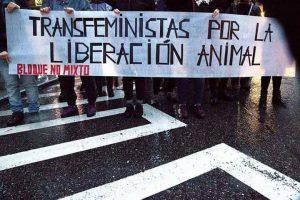 Cinco razones por las que los derechos animales son una cuestión feminista